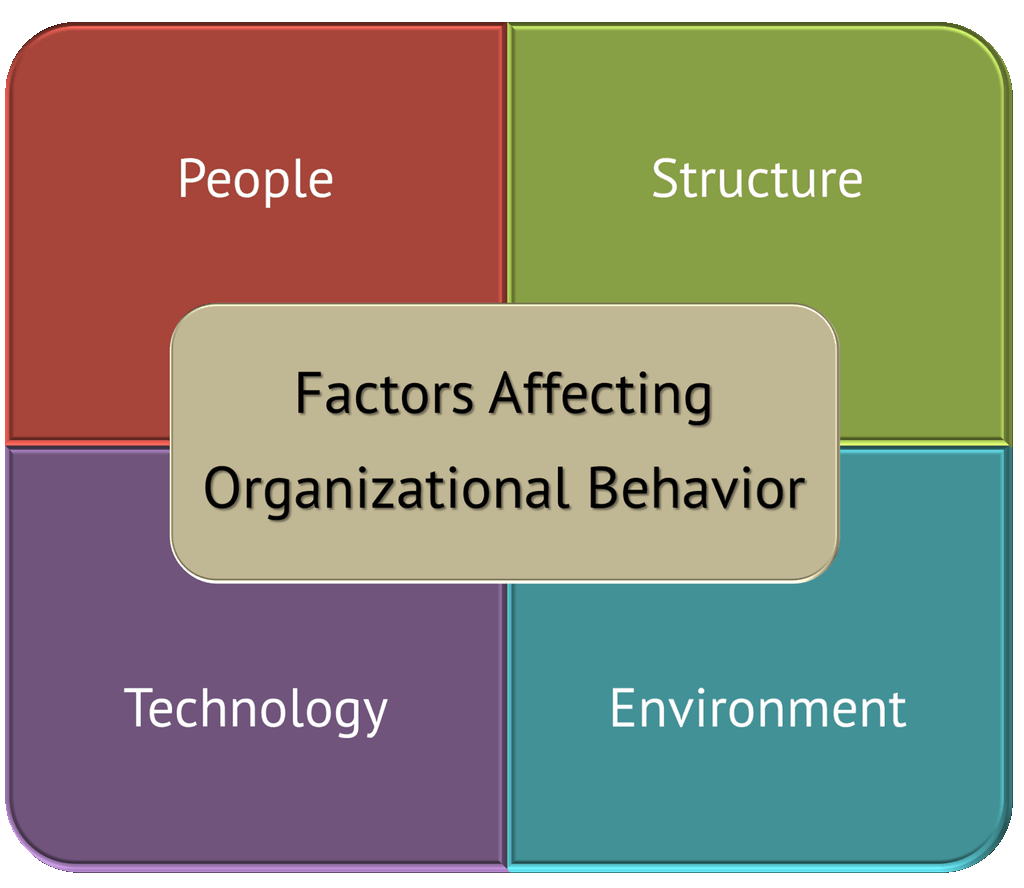 Factors Influencing Accounting Systems