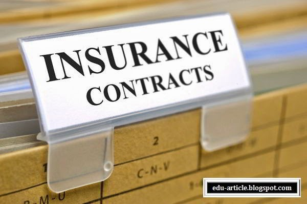 Elements Of Insurance Contract How It Works